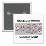 Process Of Mitosis Ongoing Inside Pinback Buttons
