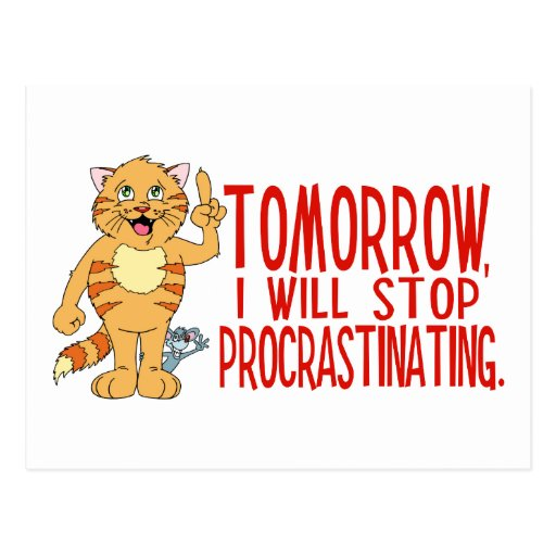 Procrastinating Cat Postcard