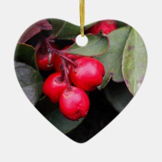 Procumbens del Gaultheria del Teaberry Adorno Navideño De Cerámica En Forma De Corazón
