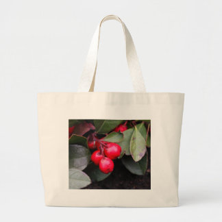 Procumbens del Gaultheria del Teaberry Bolsa Tela Grande