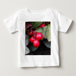 Procumbens del Gaultheria del Teaberry Camisas