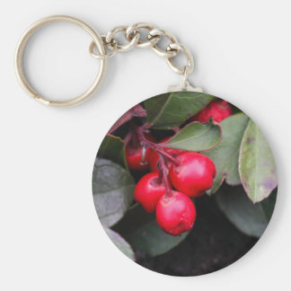 Procumbens del Gaultheria del Teaberry Llavero Redondo Tipo Pin