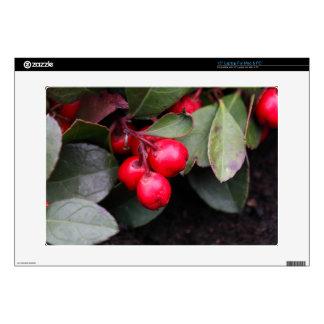 Procumbens del Gaultheria del Teaberry Portátil Skins