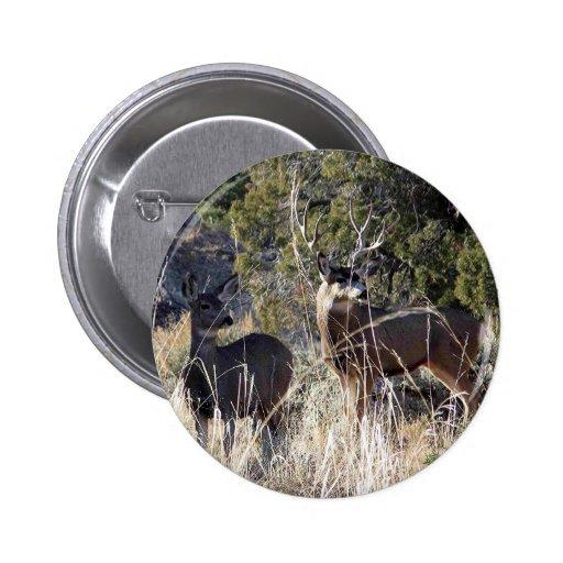 prodects de los ciervos pin