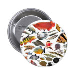 Product of photograph entering of large-sized trop pinback button