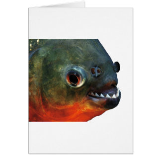 Product of piranha card