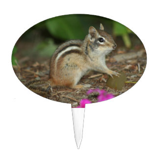 product with photo of cute chipmunk cake topper
