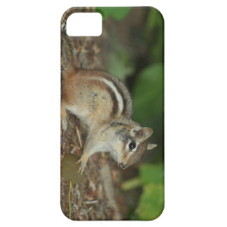 product with photo of cute chipmunk iPhone SE/5/5s case