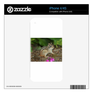 product with photo of cute chipmunk skin for iPhone 4S