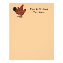 Production Red Chickens Letterhead