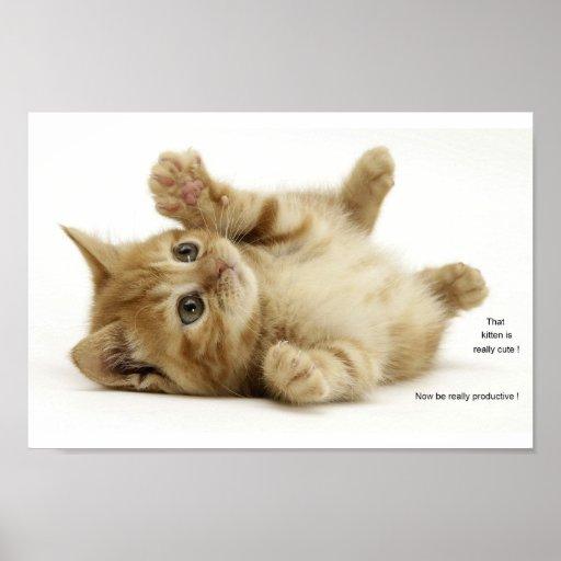 Productivity Kitten (Kitteh) Poster