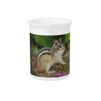 producto con la foto del chipmunk lindo jarra