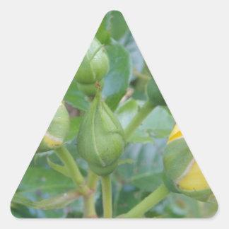 Producto de la flor pegatina triangular