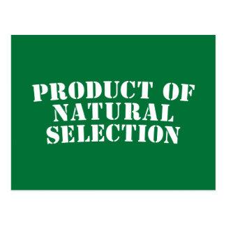 Producto de la selección natural tarjeta postal