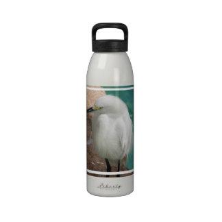 Producto del personalizar botellas de agua reutilizables