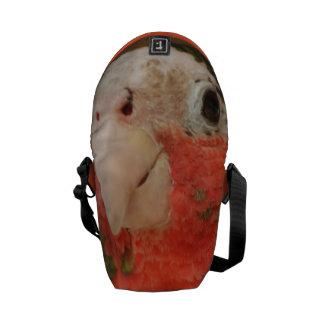 Producto del personalizar bolsas de mensajeria