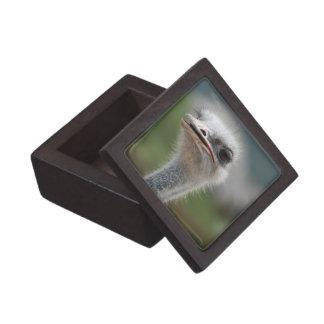 Producto del personalizar caja de joyas de calidad