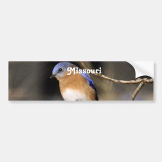 Producto del personalizar etiqueta de parachoque