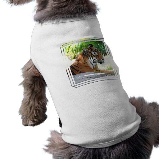 Producto del personalizar camiseta de mascota
