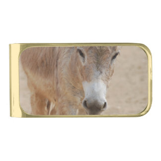 Producto del personalizar clip para billetes dorado