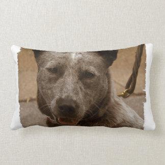 Producto del personalizar almohadas