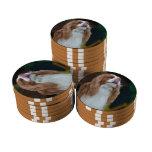 Producto del personalizar juego de fichas de póquer