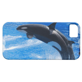 Producto del personalizar iPhone 5 Case-Mate cobertura