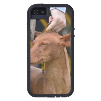 Producto del personalizar iPhone 5 Case-Mate protector