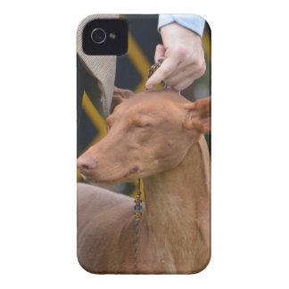 Producto del personalizar iPhone 4 carcasas