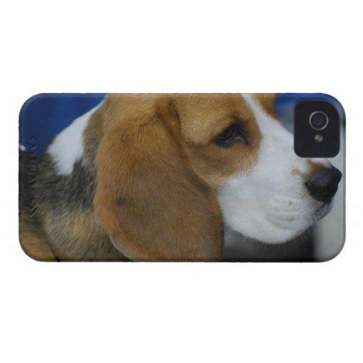 Producto del personalizar Case-Mate iPhone 4 cárcasas