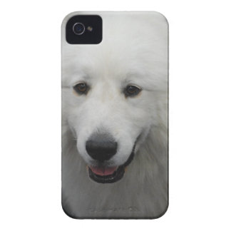Producto del personalizar iPhone 4 carcasa