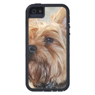 Producto del personalizar iPhone 5 Case-Mate protectores