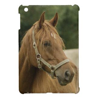 Producto del personalizar iPad mini coberturas