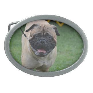Producto del personalizar hebillas cinturon ovales
