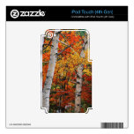 Producto del personalizar iPod touch 4G skins