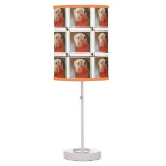 Producto del personalizar lámpara de escritorio