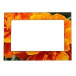 Producto del personalizar marcos magnéticos de fotos