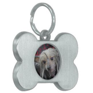 Producto del personalizar placas de nombre de mascota