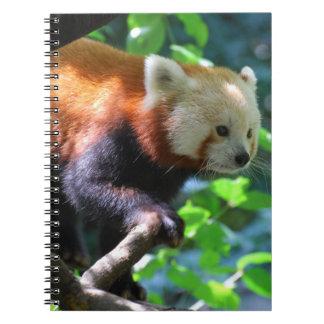 Producto del personalizar notebook