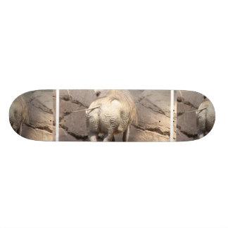 Producto del personalizar patines