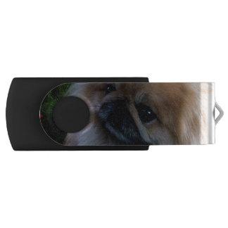 Producto del personalizar pen drive giratorio USB 2.0
