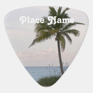 Producto del personalizar plumilla de guitarra