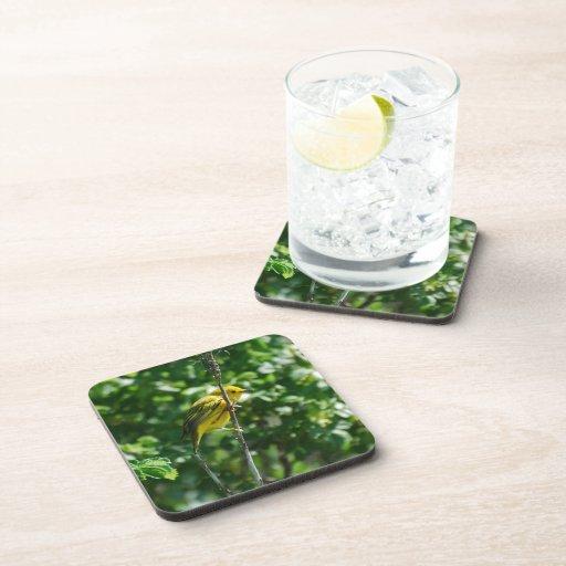 Producto del personalizar posavasos de bebida