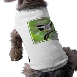 Producto del personalizar ropa perro