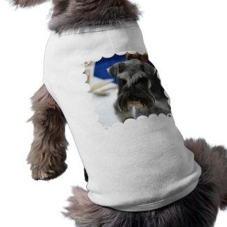 Producto del personalizar ropa de perro