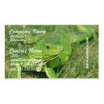 Producto del personalizar plantillas de tarjeta de negocio