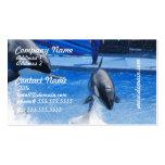 Producto del personalizar plantillas de tarjetas de visita