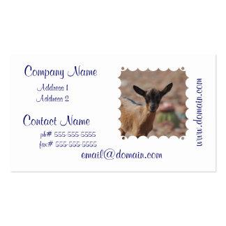 Producto del personalizar tarjetas de visita