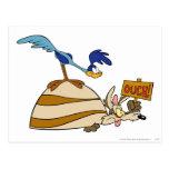 Productos 5 de la cumbre del coyote y de los postales