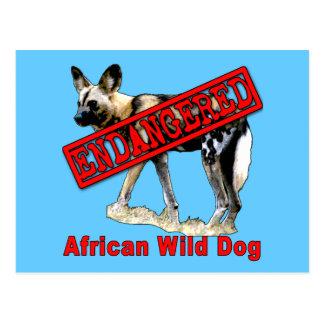 Productos animales en peligro africanos del perro tarjeta postal